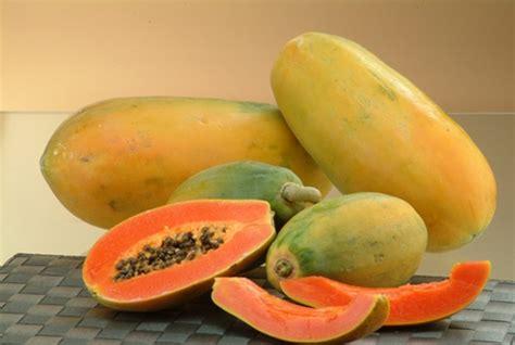 filipino en papaya recipe picture 14