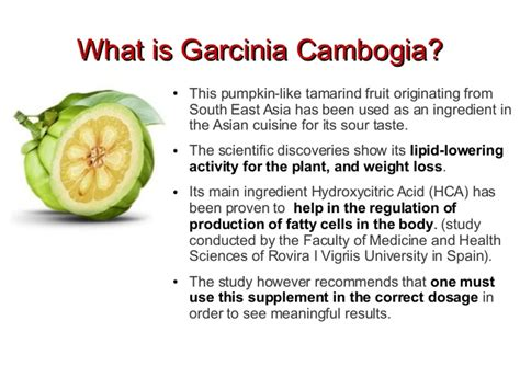 what is garcinia cambogia fruit extract picture 3