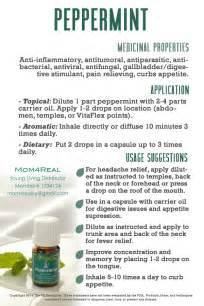 peppermint essential oil dental whitening picture 1