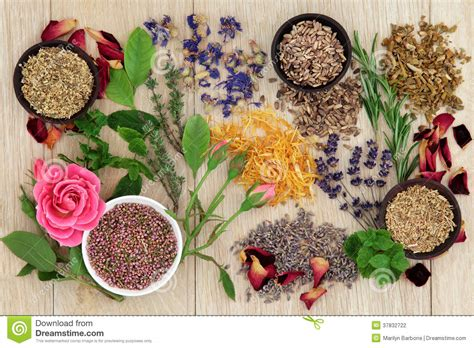 what is the controversy over natural herbs picture 3