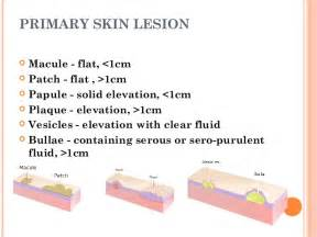 clm and lesion skin pictures picture 5