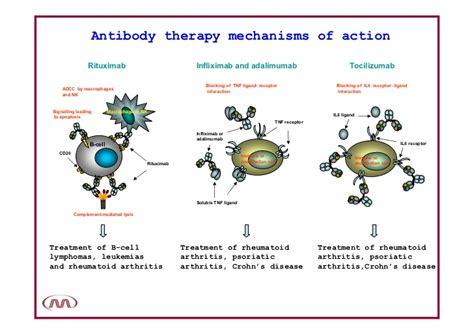 herbal arrightis pills picture 7