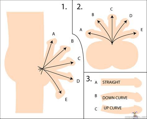 exercises for erectile dysfunction men picture 6