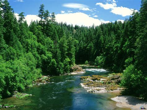 ultra green costa rica picture 6