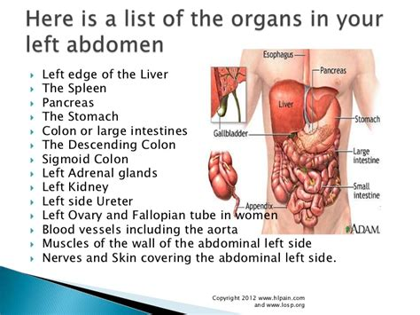 Pain in lower colon area means picture 1