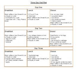 sample menu for th 3 hour diet picture 2