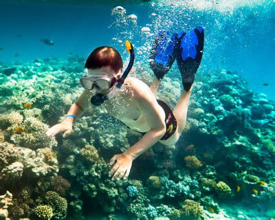hawaii skin divers picture 3
