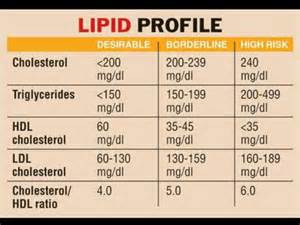 Blood cholesterol level picture 7