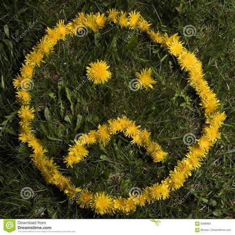 upsetting el flora picture 14