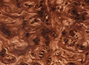 liquid picture 1