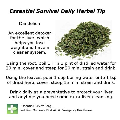 weight loss pills using liver detox picture 11