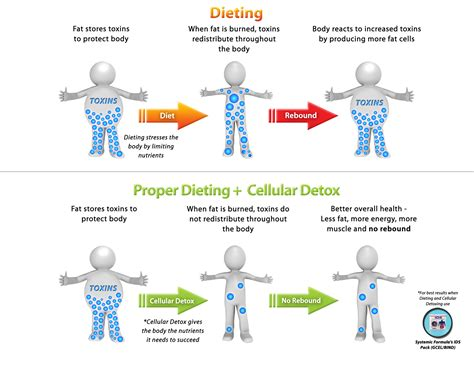 whole body cleanse picture 9