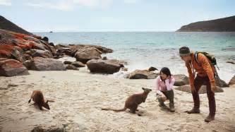 where to buy nevexen in australia picture 15