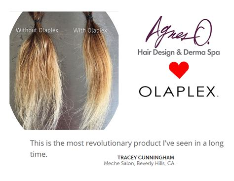 hair salons in pa that use olaplex picture 10