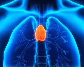 restoring colon health picture 18