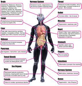 alcohol liver problems picture 10