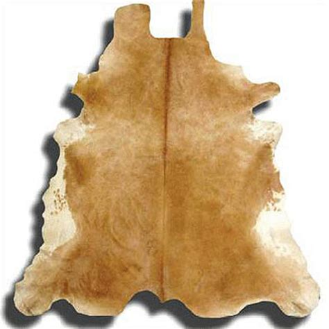 cow skin picture 19
