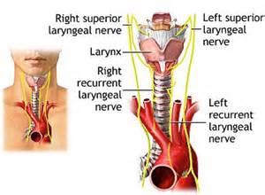 thyroid hot nodules optic nerve damage picture 1