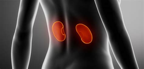 women joint pain symptom picture 17