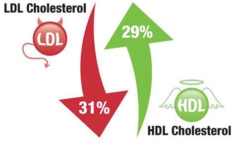 cholestrol lowering diet picture 7
