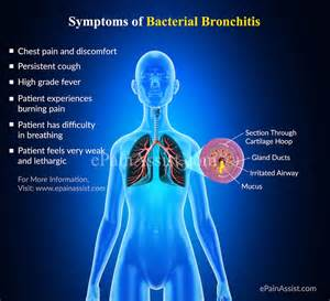 bacterial bronchitis picture 1