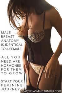 male breast feminization picture 6