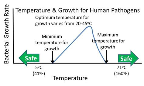 how does tempertature affect microbial growth picture 5