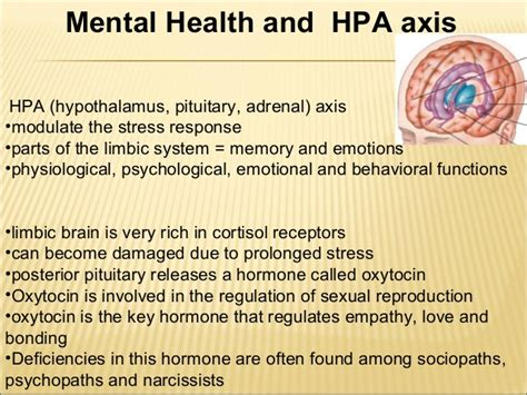 which vitamin can help the hormone oxytocin picture 10
