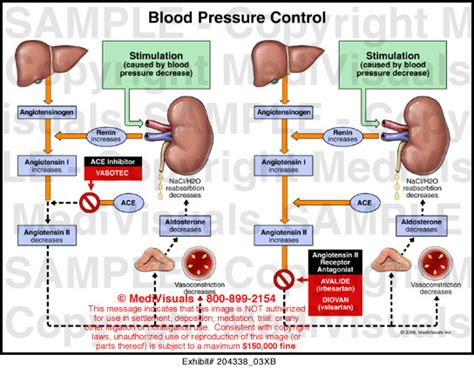 Blood pressure control picture 2