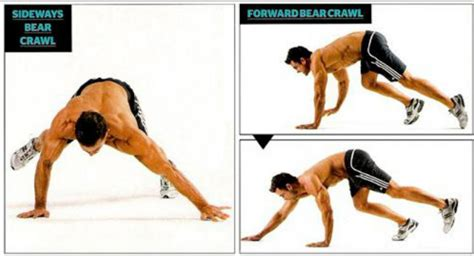 definition of muscle endurance picture 10