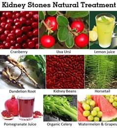 bladder healing foods picture 1