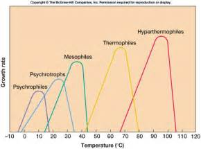 how does tempertature affect microbial growth picture 6