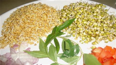 fenugreek sprouts nutrition picture 13
