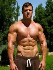 male smooth muscle model picture 9