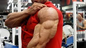 build tricep muscle picture 3