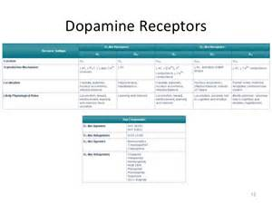 herbs for dopamine d2 receptor picture 7