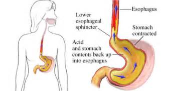 digestive disease center picture 2