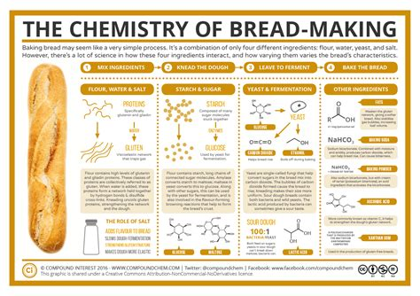 chemical reactions that cause yeast to rise in picture 3