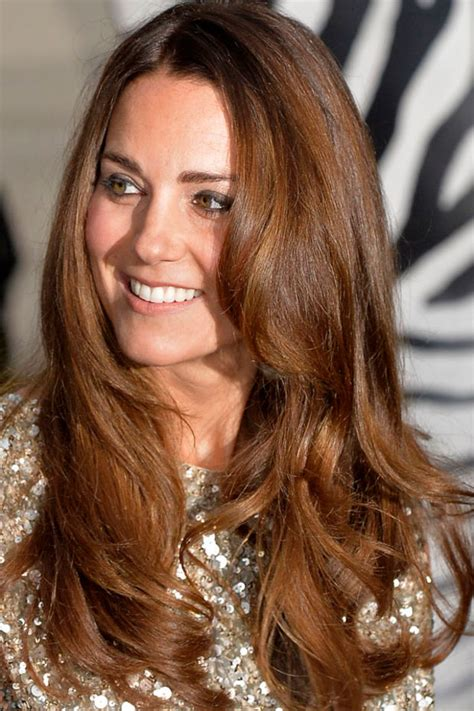 highlights for med brown hair picture 5