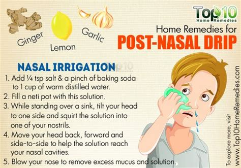 what herbs can stop a post nasal drip picture 1