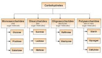 carbohydrate type diet picture 2