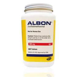 albon for bladder infections picture 10