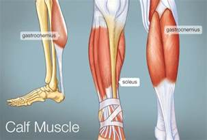 calf muscle lump picture 6