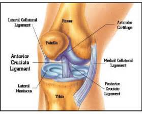knee joint pain treatment nonsurgical picture 5