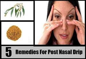best herb for post nasal drip picture 1