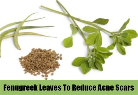 fenugreek pills for acne picture 7