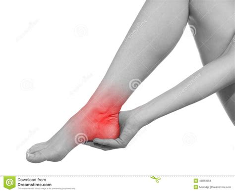 sports - knee joint picture 9