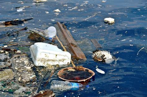 marine debris picture 7