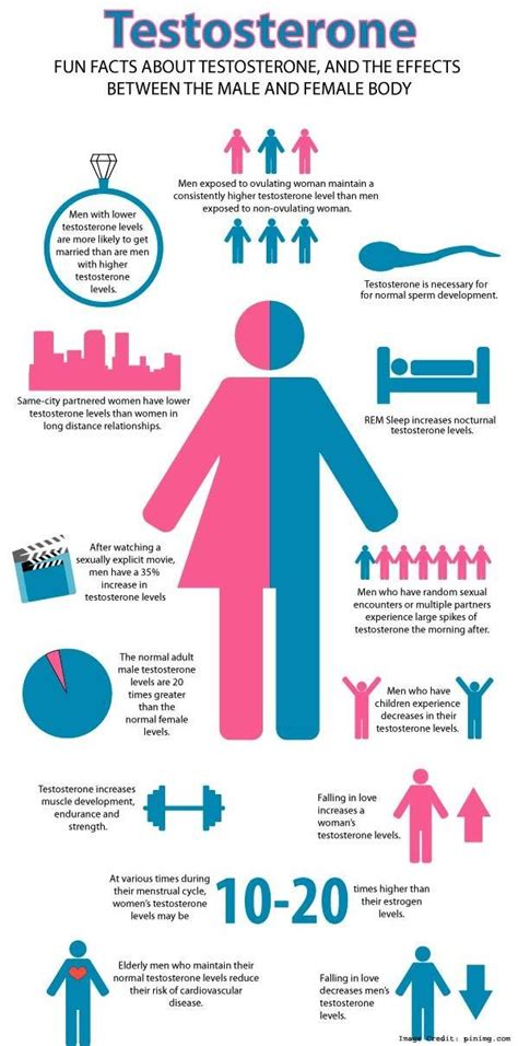 testosterone levels and pcos picture 11