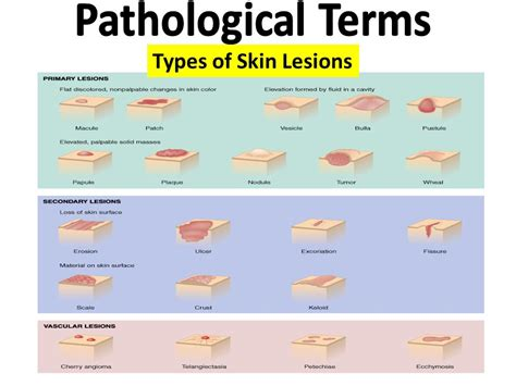 skin leasions picture 3